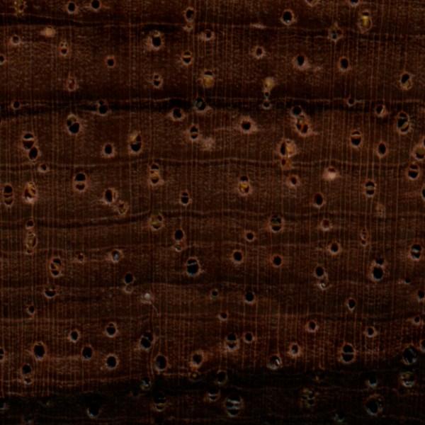 Details | Brazilian Rosewood Pores